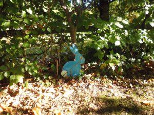 Easter Bunny Hunt 2019 @ Highfield Park Visitor Centre