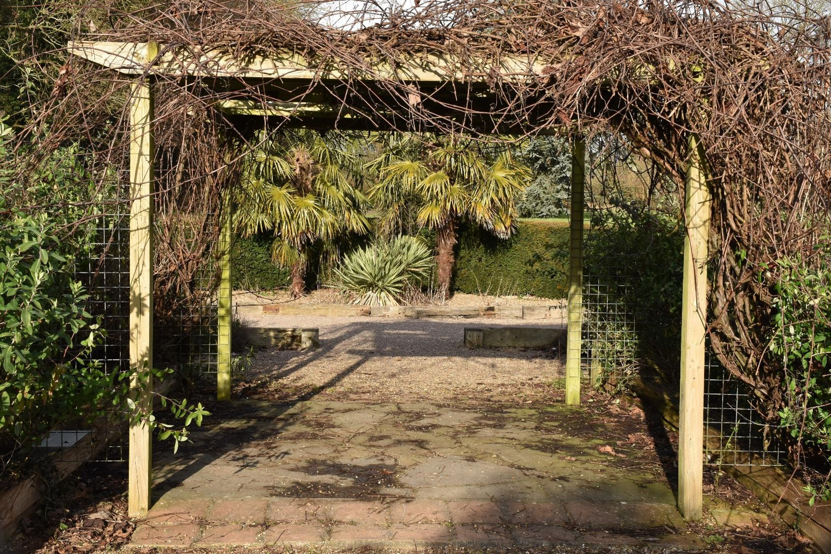 Mediterranean Garden | Highfield Park Trust