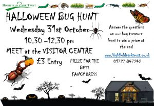 Bug Hunt @ Visitor Centre