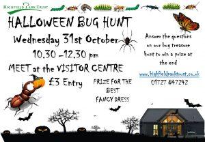 Bug Hunt @ Visitor Centre
