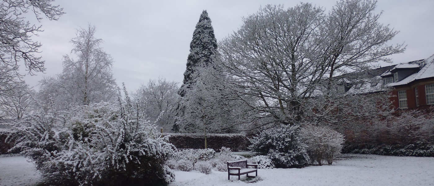 Hill End Memorial Garden in Winter