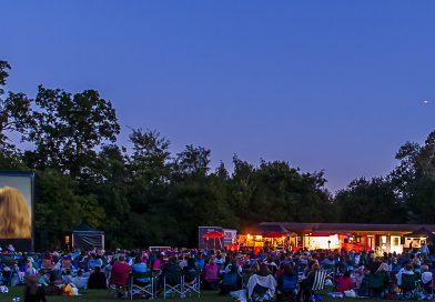 Summer Entertainment in Highfield Park