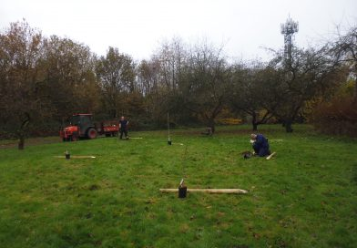 Addition of new Apple Trees