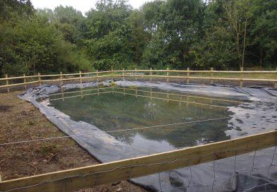 Progress on the allotment pond